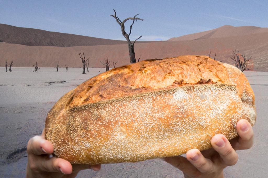 Brot in der Wüste