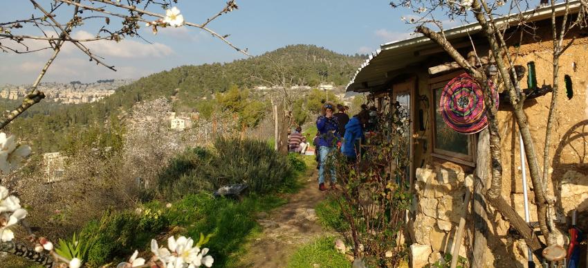 PIcknick unter blühenden Mandelbäumen in En Karem nahe Jerusalem
