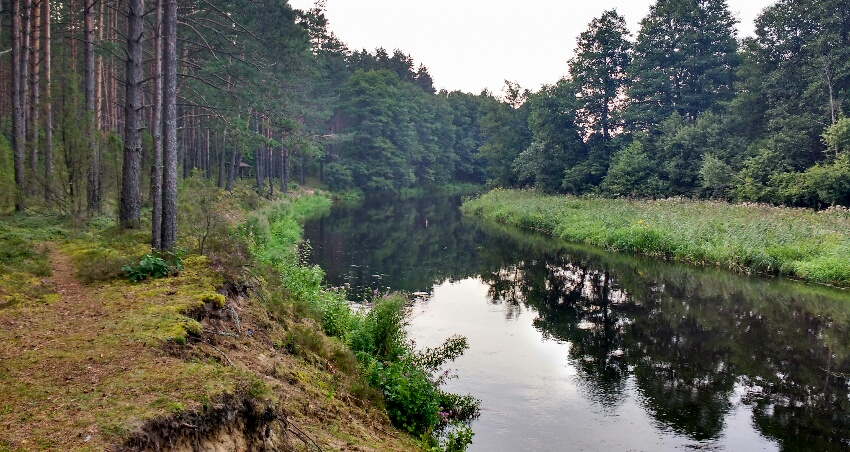 Roadtrip_Litauen_schoene_Natur.jpg