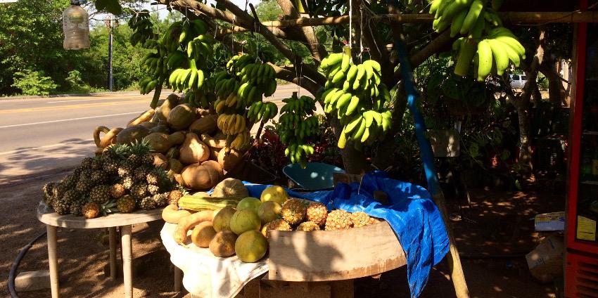 Kulinarisches Mexiko: Obststand am Straßenrand