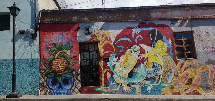 20180427_Oaxaca Strassenszene Wandbemalung Mural (c) Jäger des verlorenen Schmatzes