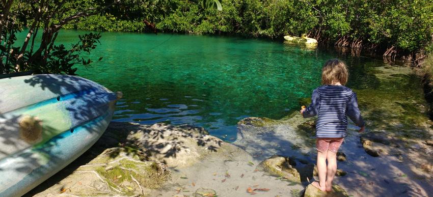 Hunderte Cenoten gibt es auf der Yucatan-Halbinsel und jede hat ihren ganz eigenen Reiz