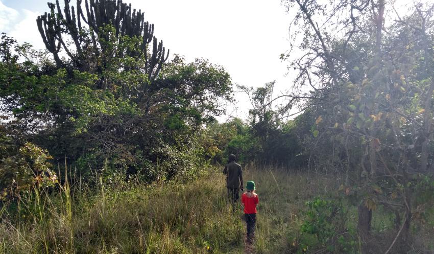 Unvergessliches Erlebnis: zu Fuß durchs Nashornland