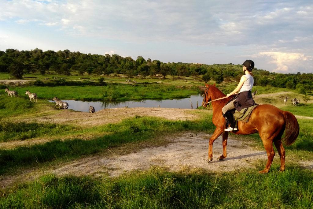 Reitsafari im Lake Mburo Nationalpark Uganda Pferd und Reiterin mit Zebras