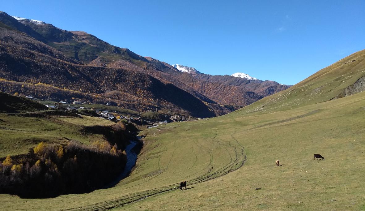 Ushguli Georgien Berge Kühe Gebirge Wandern (c) www.JaegerDesVerlorenenSchmatzes.de