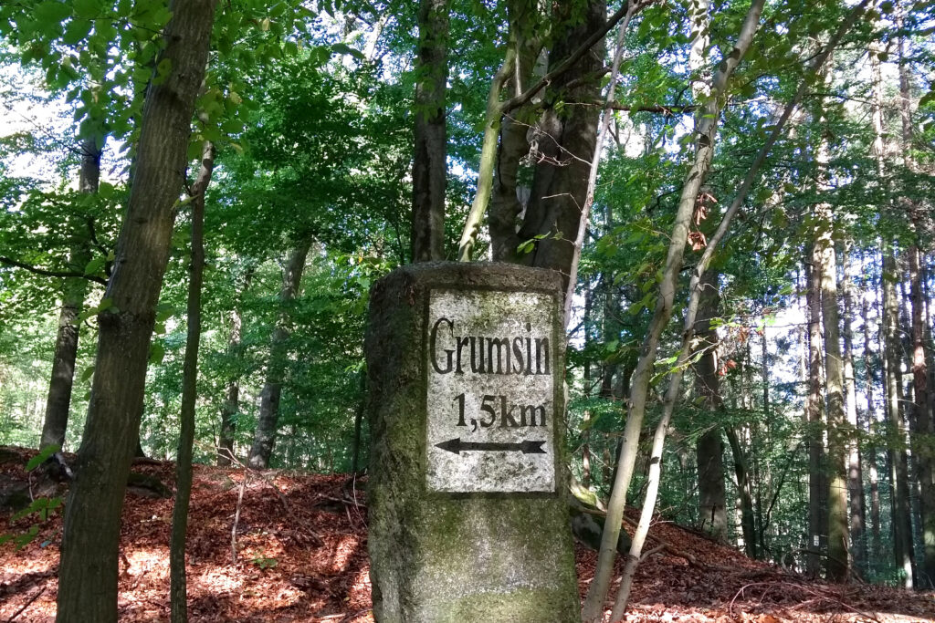 Grumsin Wanderung Radtour Weltnaturerbe Buchenwald (c) www.JaegerDesVerlorenenSchmatzes.de